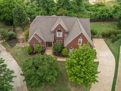 Collierville Single Family Home For Sale: 950 Broken Arrow