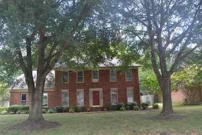 Collierville Single Family Home Contingent: 648 Silverman