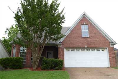 Bartlett Single Family Home For Sale: 4012 Fairway View