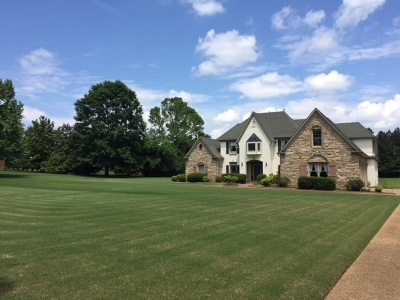 Collierville Single Family Home For Sale: 1160 Snowden Farm
