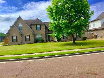 Shelby County Single Family Home For Sale: 8517 Kamin