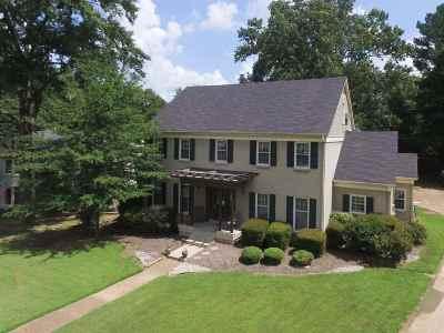 Germantown Single Family Home For Sale: 8386 Creek Bridge