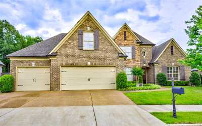 Lakeland Single Family Home Contingent: 10177 Carly