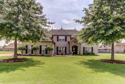 Olive Branch Single Family Home For Sale: 4028 Arbor