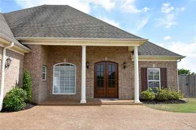 Southaven Single Family Home For Sale: 2931 Summer Oaks