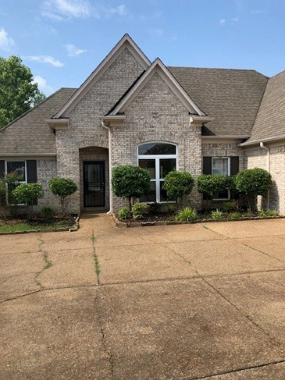 Memphis Condo/Townhouse For Sale: 843 Blue Pearl
