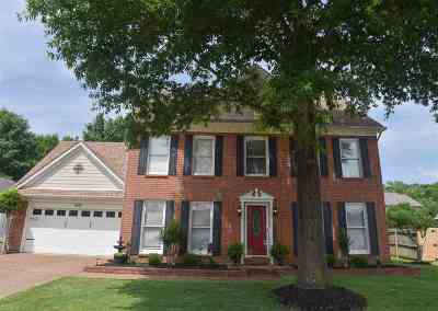 Collierville Single Family Home Contingent: 1505 Kelsey Woods