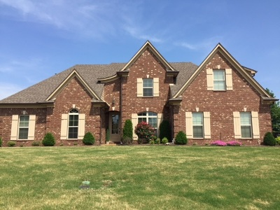 Southaven Single Family Home For Sale: 3808 Marcia Louise