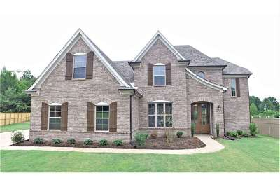 Olive Branch Single Family Home For Sale: 5206 Stonecrest
