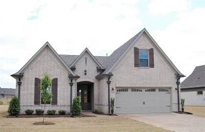 Southaven Single Family Home For Sale: 3195 Forest Bend