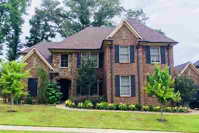 Lakeland Single Family Home For Sale: 10224 Oak Levee