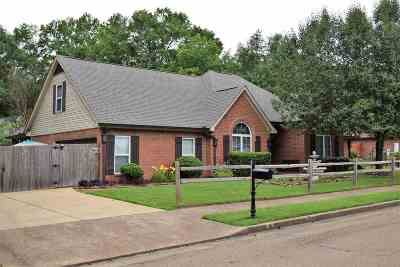 Collierville Single Family Home For Sale: 231 Bradford Ridge