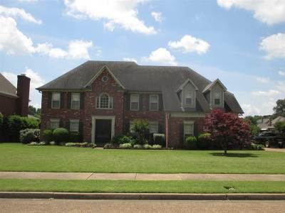 Collierville Single Family Home Contingent: 1115 Ravenna