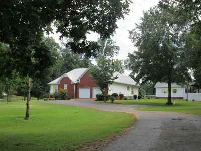 Savannah Single Family Home For Sale: 330 Neill Cemetery