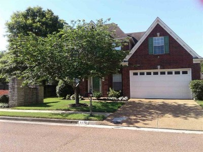Collierville Single Family Home Contingent: 9333 S Fairmont