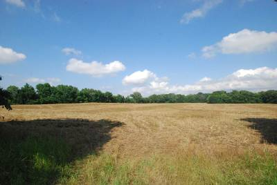 Residential Lots & Land For Sale: Henery Moore And Henning Orsa