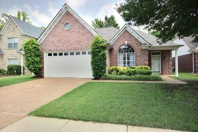 Collierville Single Family Home Contingent: 9268 N Fairmont