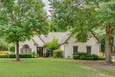 Collierville Single Family Home For Sale: 2164 Houston