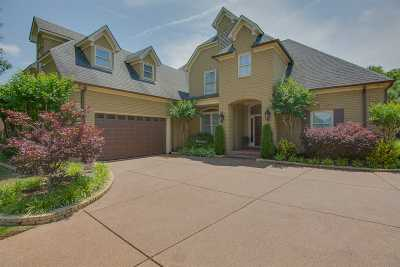 Collierville Single Family Home For Sale: 10349 Plantation Elm