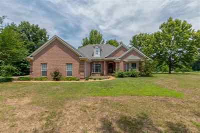 Olive Branch MS Single Family Home For Sale: $250,000
