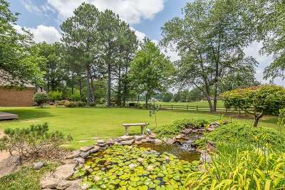 Collierville Single Family Home Contingent: 2672 Dibrell Trail
