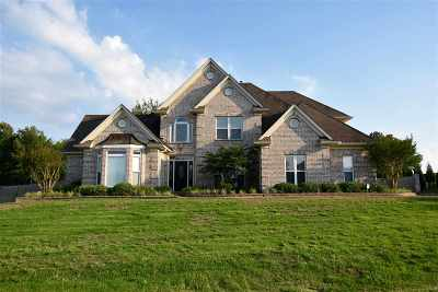 Olive Branch Single Family Home For Sale: 8595 Belmor Crossing