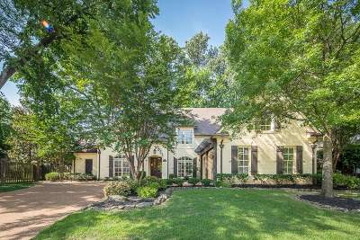 Collierville Single Family Home For Sale: 173 Ivy Grove