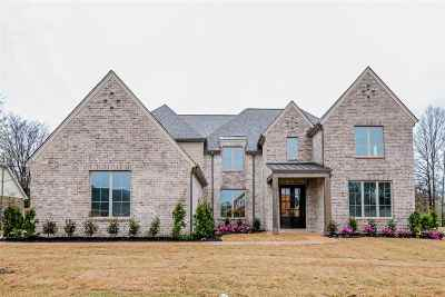 Collierville Single Family Home For Sale: 527 Tender Oaks