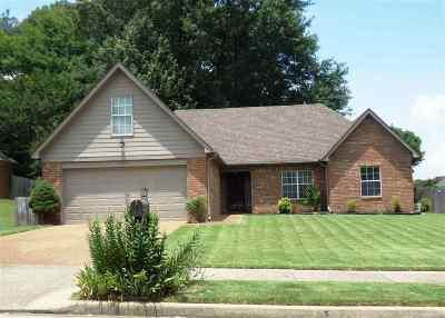 Bartlett Single Family Home For Sale: 7268 Noah