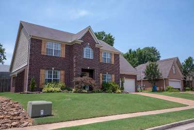 Arlington Single Family Home Contingent: 5259 Summer Meadows