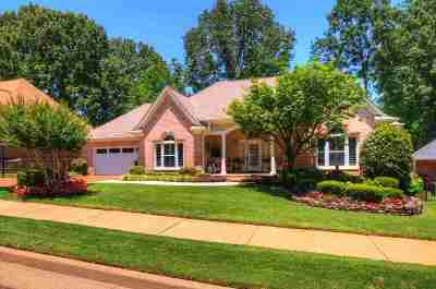 Collierville Single Family Home Contingent: 708 Belle Watley