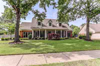 Collierville Single Family Home Contingent: 964 Handforth