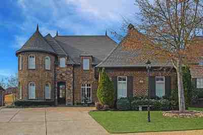Olive Branch Single Family Home For Sale: 6861 Dakota