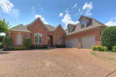 Memphis Single Family Home For Sale: 3237 S Silverwind