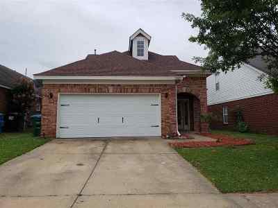 Arlington Single Family Home For Sale: 12023 Misty