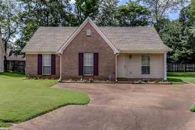 Collierville Single Family Home Contingent: 279 Carolton