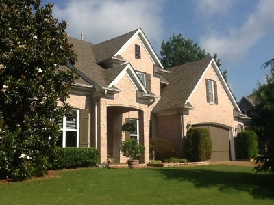Germantown Single Family Home For Sale: 2995 Leesburg