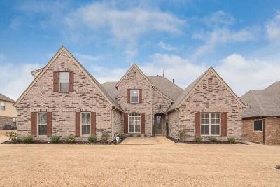 Bartlett Single Family Home For Sale: 4587 Nob Hill