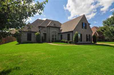 Collierville Single Family Home For Sale: 1341 Shallow Brook