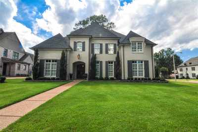 Germantown Single Family Home For Sale: 3015 Inspiration