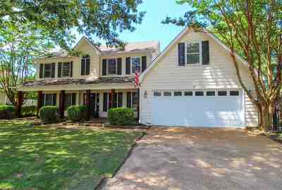 Collierville Single Family Home For Sale: 164 Doris Meadow