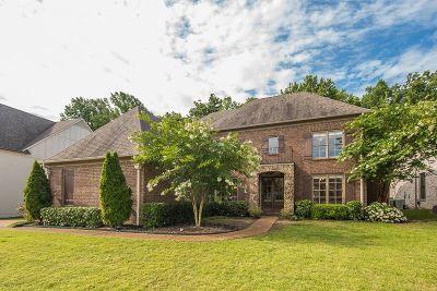 Lakeland Single Family Home For Sale: 10197 Oak Levee
