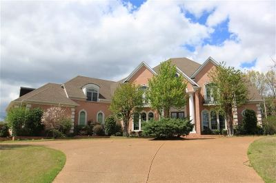 Memphis Single Family Home For Sale: 3223 Wedge Hill