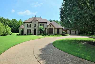 Unincorporated TN Single Family Home For Sale: $625,000