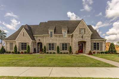 Collierville Single Family Home For Sale: 1513 Painted Horse