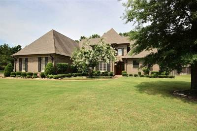 Collierville Single Family Home For Sale: 1561 Brackenshire