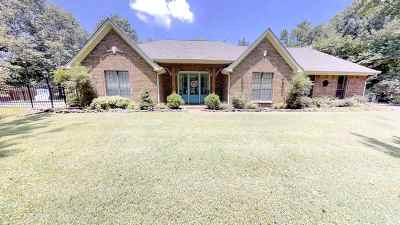 Lakeland Single Family Home For Sale: 9518 S Stewart