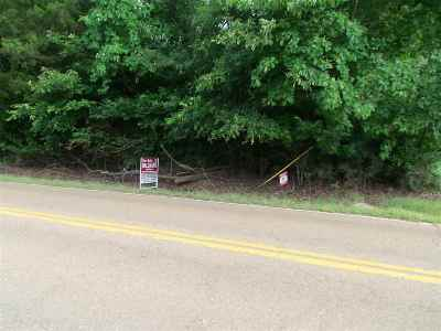 Bartlett Residential Lots & Land For Sale: 7351 Old Brownsville