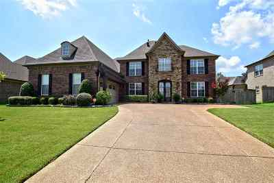 Arlington TN Single Family Home Contingent: $334,900