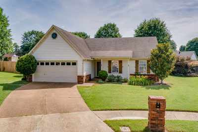 Collierville Single Family Home Contingent: 251 Brookstone